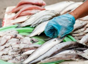 What Makes Fish Food Poisoning so Dangerous