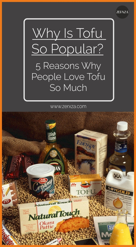 Why Is Tofu So Popular - 5 Reasons Why Tofy is So Loved